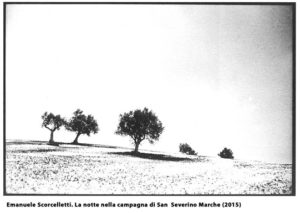 scorcelletti-foto